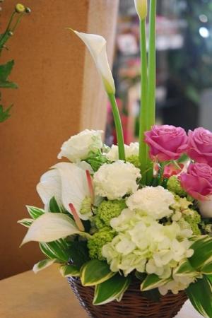 arrangement.jpg