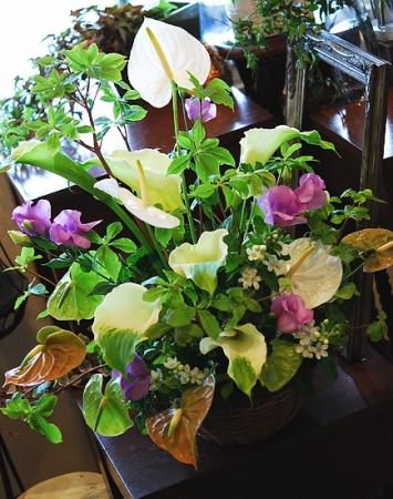 arrangement01.jpg