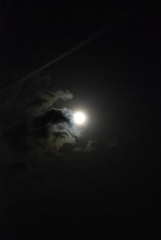 おぼろ月.jpg