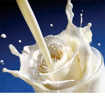 Milk Rose.jpg