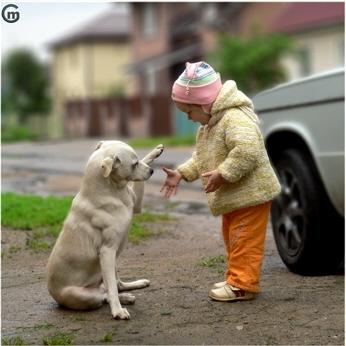 女の子と犬01.jpg
