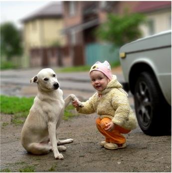 女の子と犬02.jpg