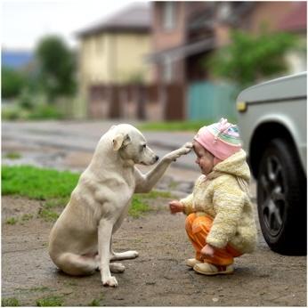 女の子と犬04.jpg
