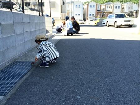 blog-IMG_9568.jpg